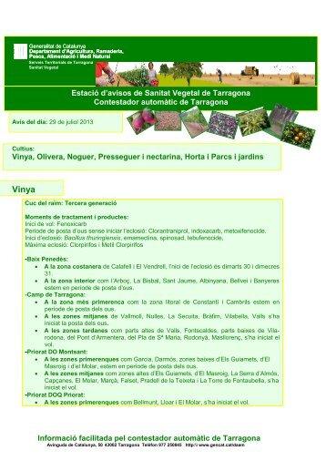 Juliol 12.pdf - Ajuntament de la Selva del Camp