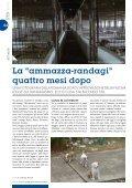 News-20-BASSA - Page 4