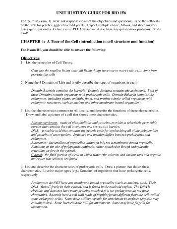 7 2 Cell Structure Worksheet Answers: Chapter 3 Cell Structure And Function Worksheet Answers    ,
