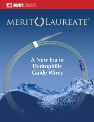 A New Era in Hydrophilic Guide Wires - Merit Medical