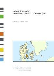 Odense Fjord - Naturstyrelsen