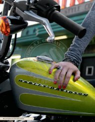 color shop & custom sitze - HARLEY-DAVIDSON Rostock GmbH