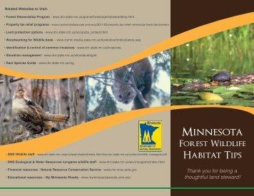 Minnesota Forest Wildlife Habitat Tips - My Minnesota Woods