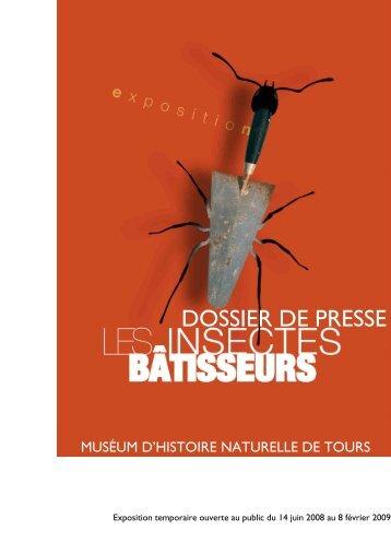 dossier de presse Insectes Bâtisseurs - Les insectes bâtisseurs