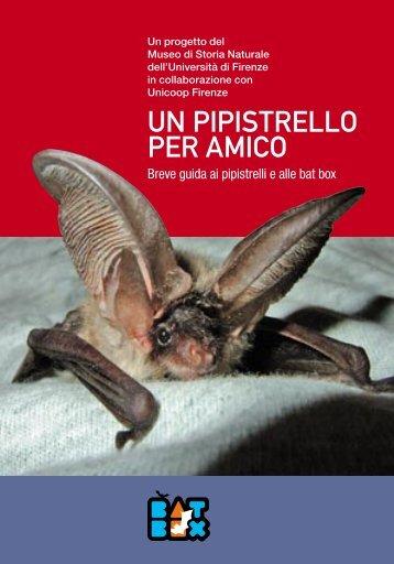 un pipistrello per amico - Museo di Storia Naturale - Università degli ...