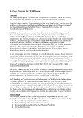 Auf den Spuren der Wildbienen - Wildbienen in der Umweltbildung - Seite 2