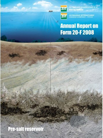 Annual Report on Form 20-F 2008