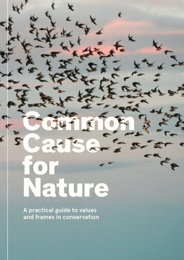 Practitioner's Guide - Common Cause