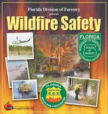 Wildfire safety brochures for educators - Volusia County Government