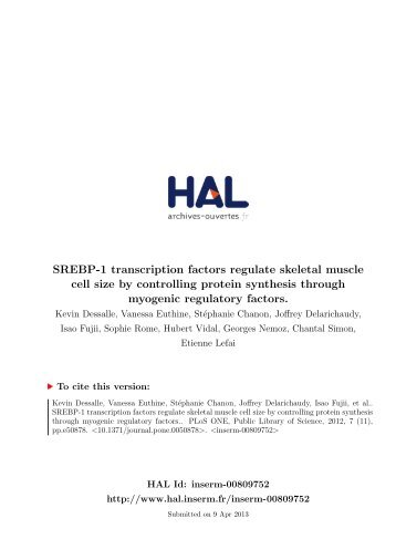 SREBP-1 Transcription Factors Regulate Skeletal Muscle Cell ... - HAL