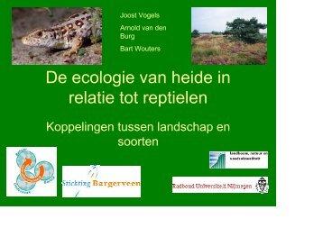 De ecologie van heide in relatie tot reptielen - VeldwerkPlaatsen