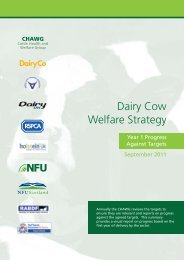 Dairy Cow Welfare Strategy - British Cattle Veterinary Association