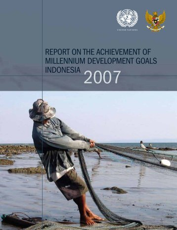report on the achievement of millennium development goals ... - UNDP