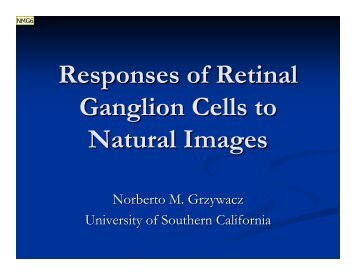 Responses of Retinal Ganglion Cells to Natural Images