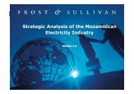 Strategic Analysis of the Mozambican Electricity Industry - Growth ...