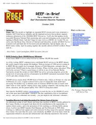 REEF-in-Brief - October 2006 - e-Newsletter of The Reef ...