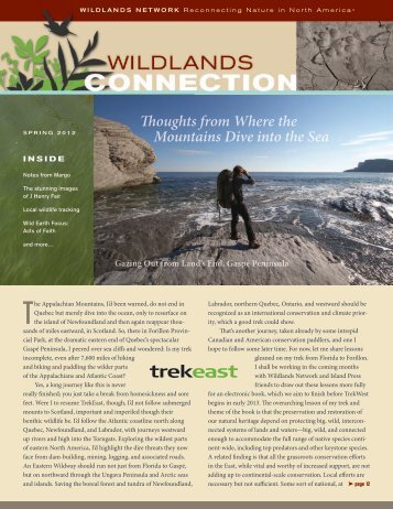 Thoughts from Where the Mountains Dive into the - Wildlands Network