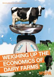 Weighing UP The economicS of dAiry fArmS - WSPA