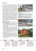 Naturgefahren bedrohen den Menschen seit Jahrtausenden - Seite 4