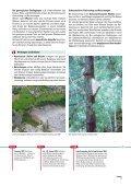 Naturgefahren bedrohen den Menschen seit Jahrtausenden - Seite 7