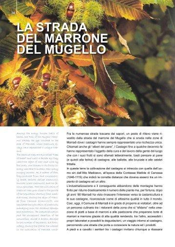 LA STRADA DEL mARRONE DEL mUgELLO - TXTmagazine