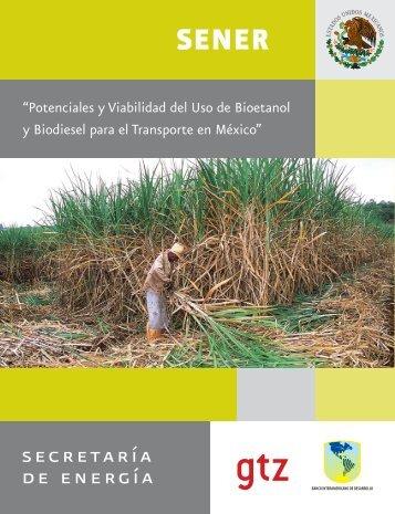 Potenciales y Viabilidad del Uso de Bioetanol y Biodiesel para el ...