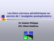 Les blocs nerveux périphériques au service de l 'analgésie ...