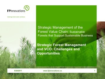 Strategic Forest Management and Value Chain Optimization - VCO