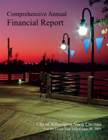Financial Report - City of Wilmington