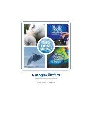the next wave - Blue Ocean Institute