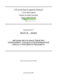 DC003 Metodika revitalizace území - Fakulta životního prostředí ...
