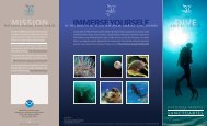 mission immerse yourself - National Marine Sanctuaries - NOAA