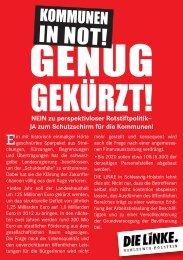 IN NOT! - DIE LINKE. Schleswig Holstein