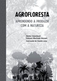agrofloresta-aprendendo-a-produzir-com-a-natureza