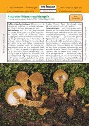 Rostroter Körnchenschirmpilz Cystoderma granulosum - Tintling