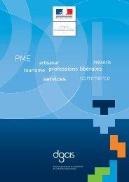 Plaquette DGCIS.pdf