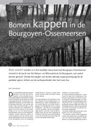 jg8_nr4_Bomen kappen in BO.pdf - Natuurpunt Gent