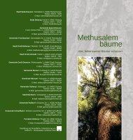 Alte, liebenswerte Bäume schützen - Reinheim