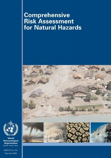 Comprehensive Risk Assessment for Natural Hazards - Planat