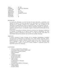 Programa Creacion de Juegos 2007-1