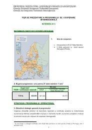 Fisa de prezentare INTERREG IV C_27nov 07 - Infocooperare