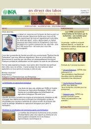 En direct des labos N°17 - Juillet 2007 - Bretagne Innovation