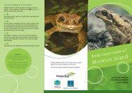 Cane Toad Brochure - Moreton Bay Regional Council