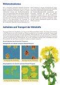 Kraftvoll mit Leichtigkeit - Bayer CropScience Deutschland GmbH - Seite 3