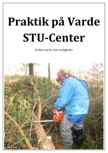 Praktik på Varde STU-Center