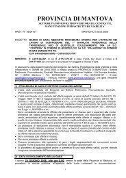 dichiara - Provincia di Mantova