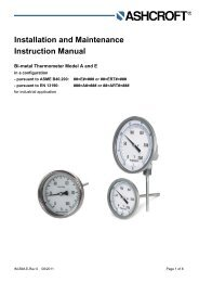 Installation and Maintenance Instruction Manual - Ashcroft ...