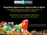 Expanding Agribusiness Opportunities in Egypt - ACDI/VOCA