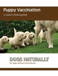 Puppy-Vaccination-Gu.. - Dogs Naturally Magazine