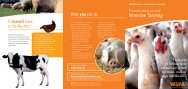 Intensive farming - WSPA